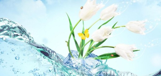 Wave water with flowers ppt